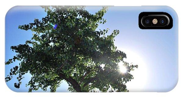 Single Tree - Sun And Blue Sky IPhone Case