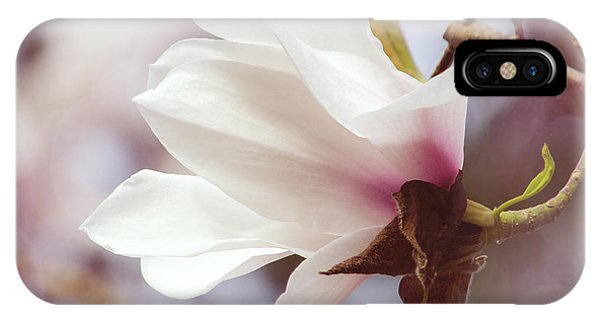 Single White Magnolia IPhone Case