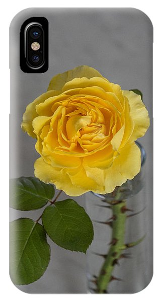 Single Yellow Rose With Thorns IPhone Case