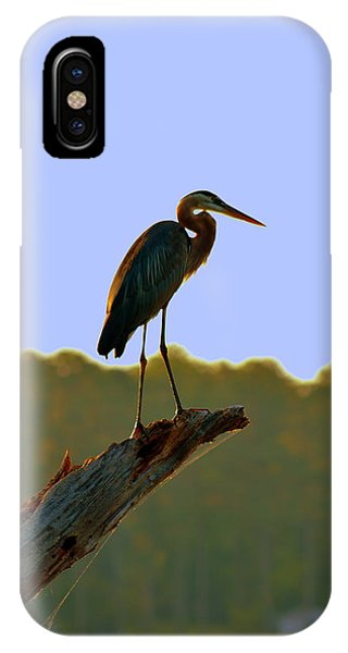 Sitting High On The Log IPhone Case