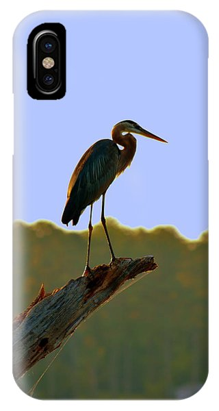 IPhone Case featuring the photograph Sitting High On The Log by Lisa Wooten
