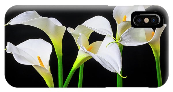 Design iPhone Case - Six Calla Lilies by Garry Gay