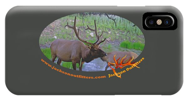Six Point Bull Elk In Colorado IPhone Case