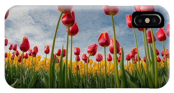Skagit Valley Spring Joy IPhone Case