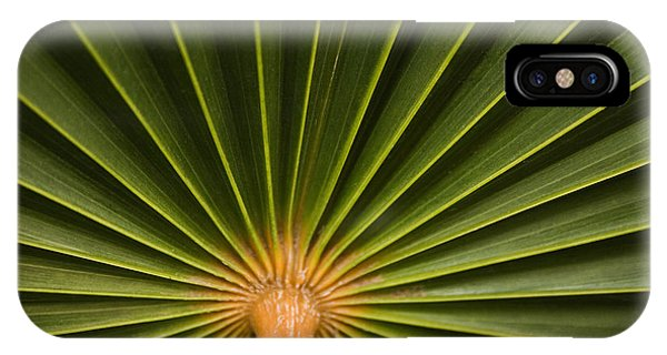 Skc 9959 Palm Spread IPhone Case