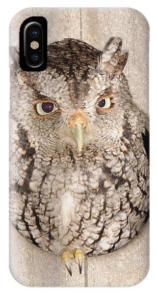 Skreech Owl IPhone Case
