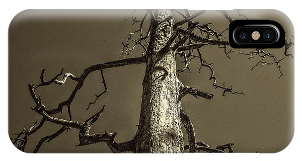 Skeletal Tree Sedona Arizona IPhone Case