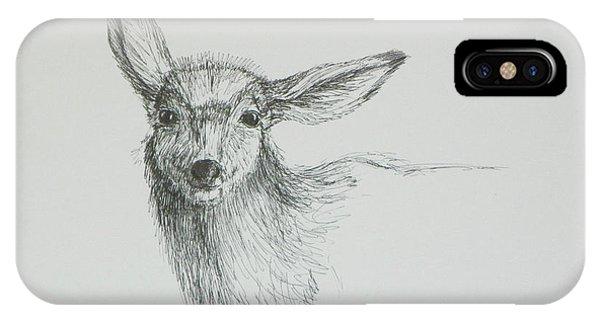 Sketch Of A Mule Deer Doe IPhone Case