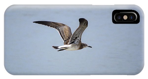 Skimming Seagull IPhone Case