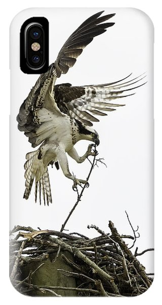 Osprey iPhone Case - Sky Ballet by Everet Regal