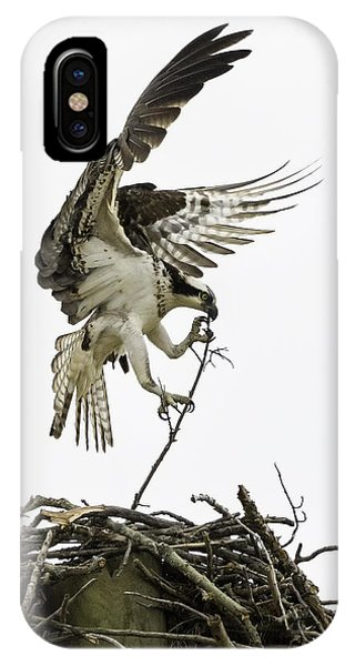 Ospreys iPhone Case - Sky Ballet by Everet Regal
