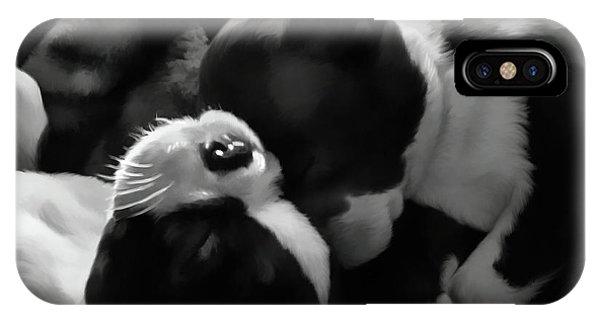 Sleeping Beauties - Boston Terriers IPhone Case
