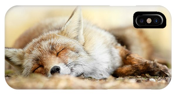 Sleeping Beauty -red Fox In Rest IPhone Case