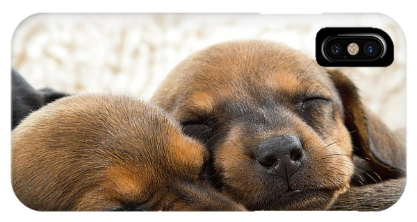 IPhone Case featuring the photograph Sleeping Dachshund Puppies by SR Green