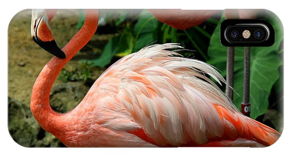 Sleeping Flamingo IPhone Case