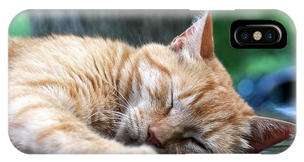 Sleeping Salem IPhone Case
