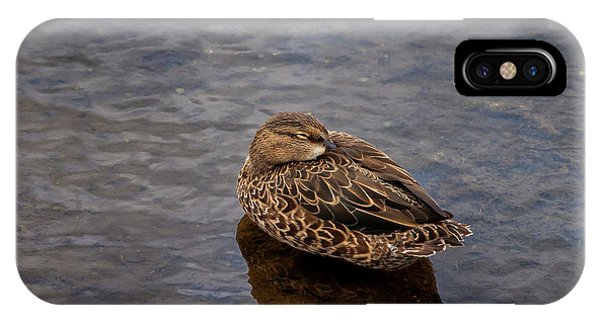 Sleepy Duck IPhone Case