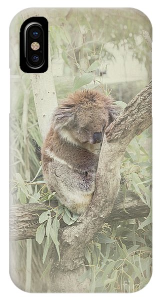 Sleepy Koala IPhone Case