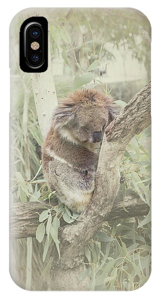 Sleepy Koala IPhone Case