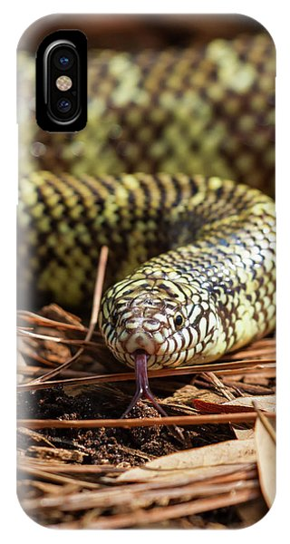 Slither Snake IPhone Case