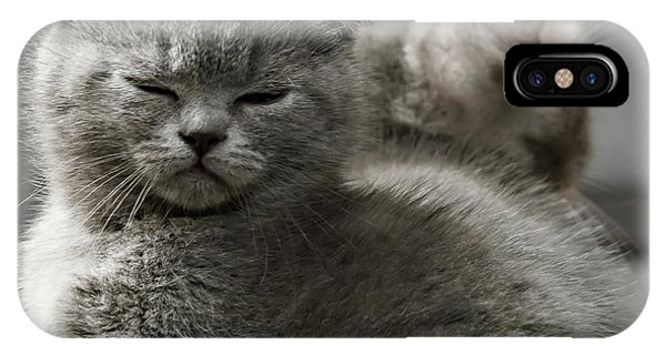 Slumbering Cat IPhone Case