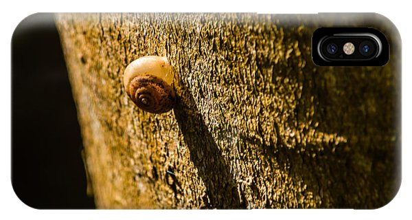 Small Snail On The Tree IPhone Case