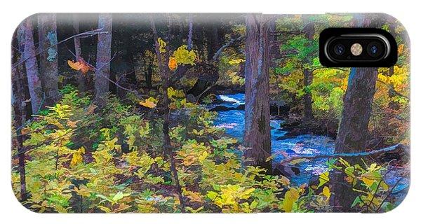 Small Stream Through Autumn Woods IPhone Case