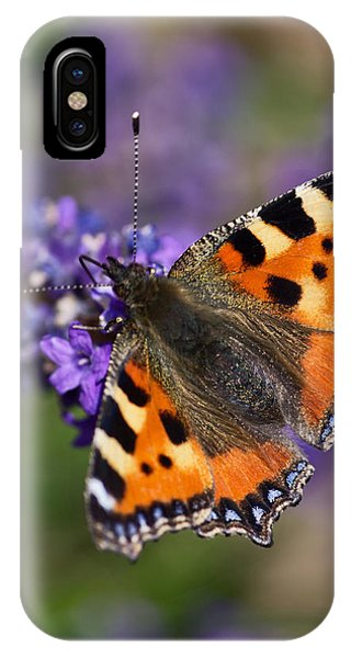 Small Tortoiseshell IPhone Case