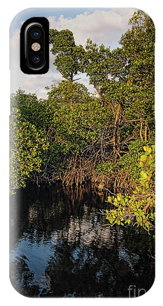 Small Waterway In Vitolo Preserve, Hutchinson Isl  -29151 IPhone Case