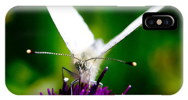 Small  White Cabbage Butterfly Pieris Rapae Phone Case by Chris Smith