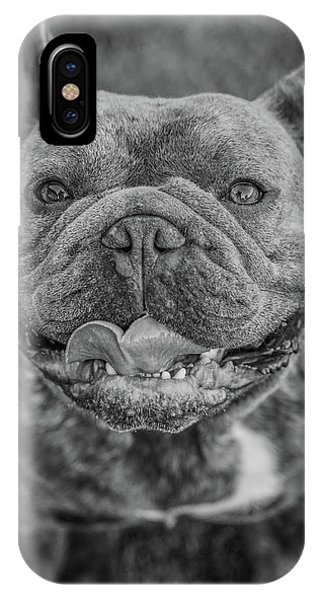 French Bull Dog iPhone Case - Smiling Frenchie by Brian Redgrave
