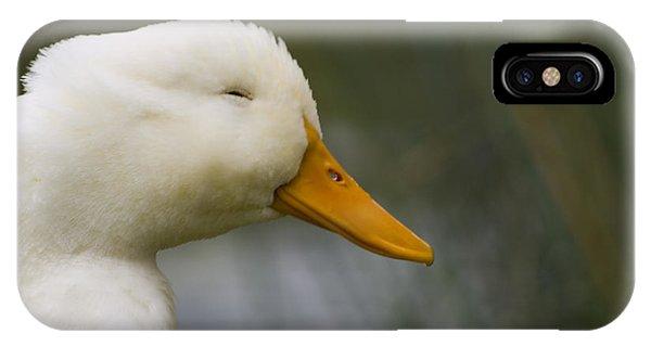 Smiling Pekin Duck IPhone Case