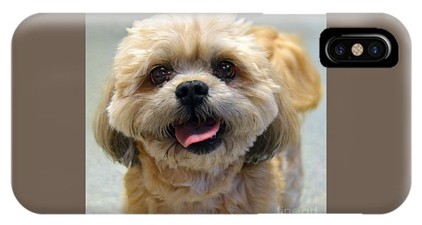Smiling Shih Tzu Dog IPhone Case