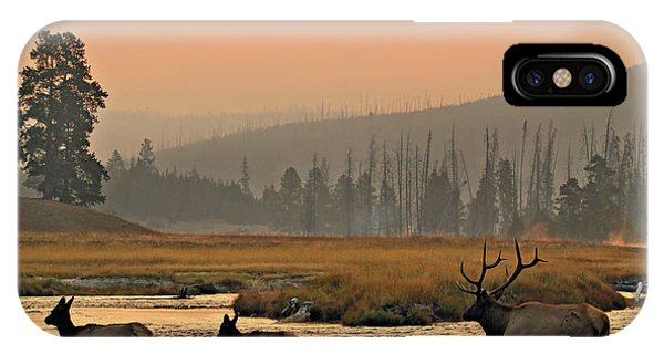 Smokey Elk Crossing IPhone Case