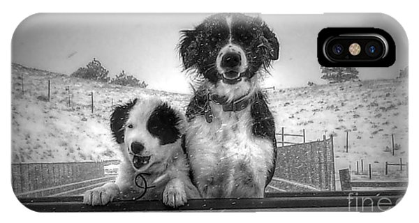 Smylie And Chica IPhone Case