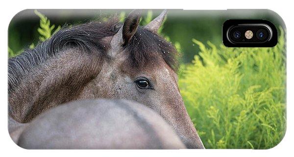 Sneak Peek IPhone Case