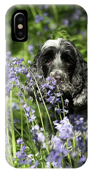 Sniffing Bluebells IPhone Case