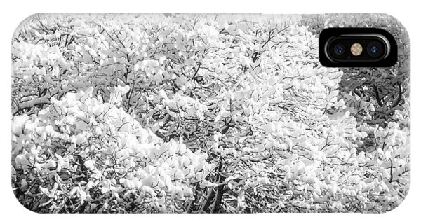Snow And Frost On Trees In Winter IPhone Case