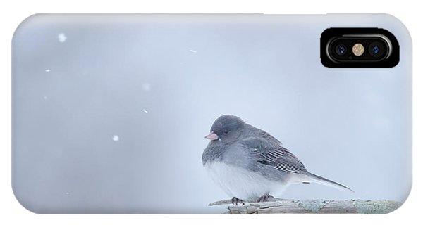 IPhone Case featuring the photograph Snow Bird by Wanda Krack