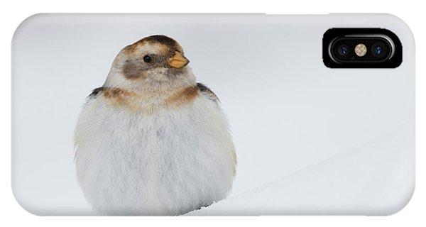 IPhone Case featuring the photograph Snow Bunting - Scottish Highlands by Karen Van Der Zijden