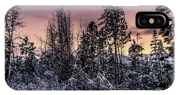 Snow Covered Pine Trees IPhone Case