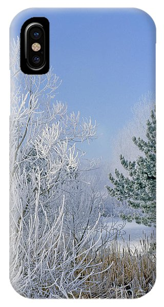 2a357 Snow Covered Trees At Alum Creek State Park IPhone Case
