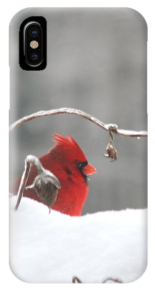 Snow Day II IPhone Case