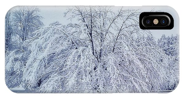 Snow Encrusted Tree IPhone Case