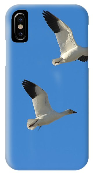 Snow Geese Moon IPhone Case