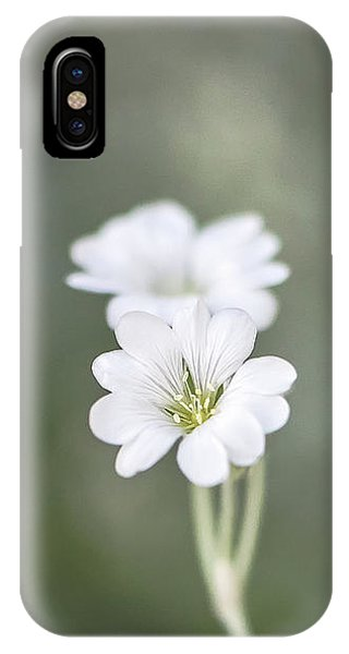 Snow In Summer IPhone Case
