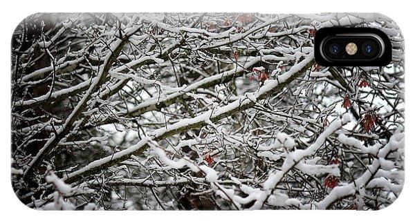 Snow Laden Trees IPhone Case