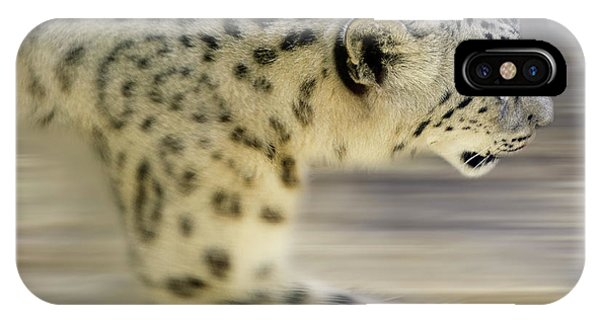 iPhone Case - Snow Leopard On The Move by Bob Christopher