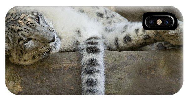 Snow Leopard Nap IPhone Case