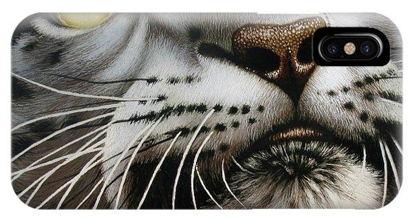 Snow Leopard iPhone Case - Snow Leopard On Glass by Jurek Zamoyski